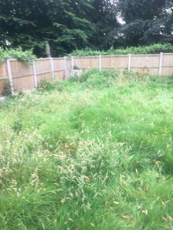 Image 15 - Sarah & Andy's Overgrown Jungle Like Garden Before...