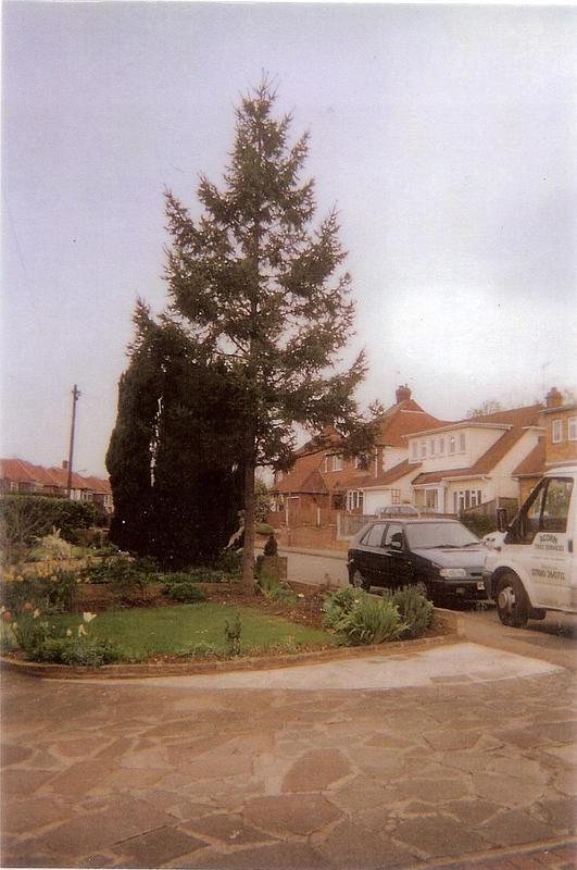 Image 52