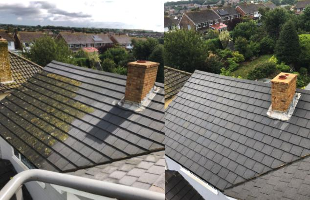 Image 8 - Before and After Chemical Roof Wash
