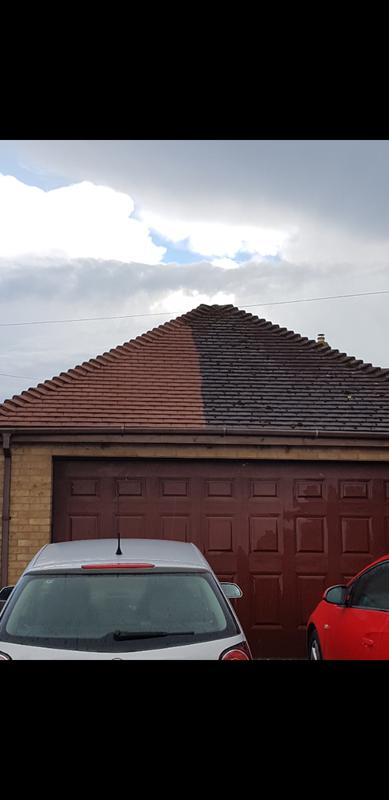 Image 3 - Roof cleaning