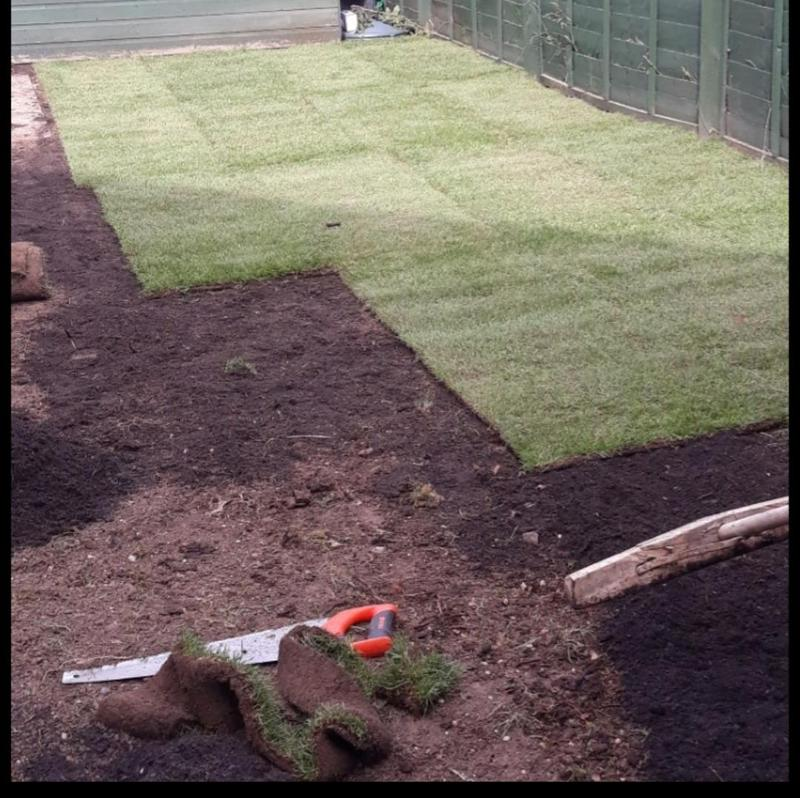 Image 260 - Lawn resurfacing and design