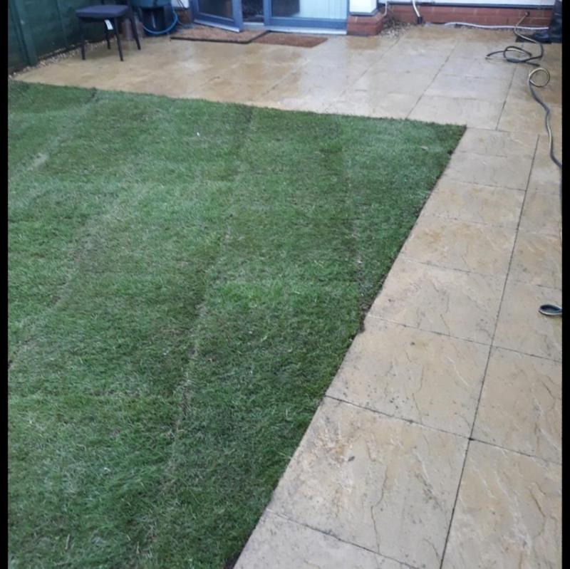 Image 259 - Lawn resurfacing and design