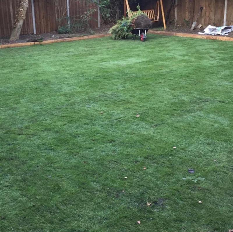 Image 235 - Lawn resurfacing