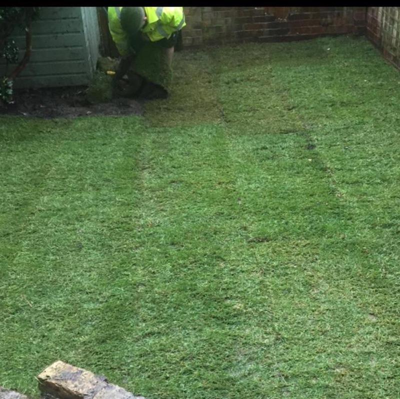Image 231 - Lawn resurfacing