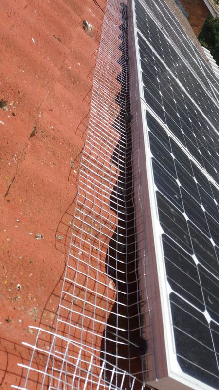 Image 4 - Bird Proofing team at MIDS continues to proof the solar panels