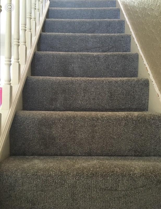 Image 71 - New Carpet