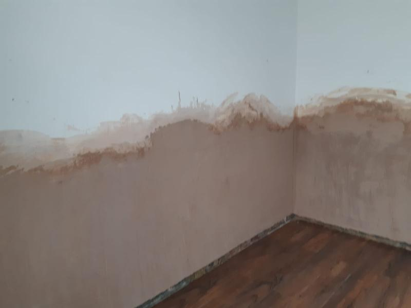 Image 19 - Pic of damp injection re render chemical damp course   Reduced ground levels outside and a new plinth