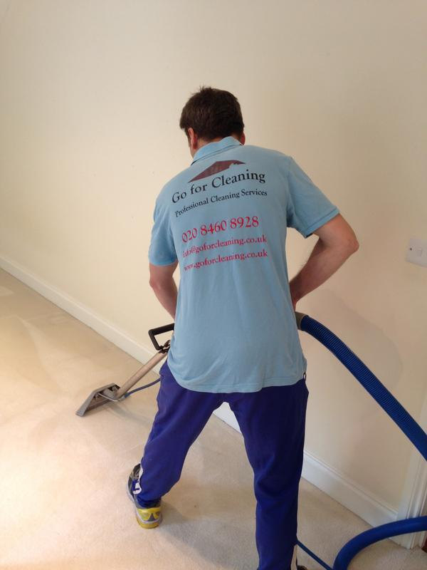 Image 21 - Professional Carpet Cleaner