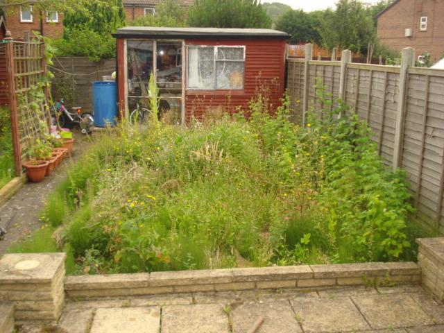 Image 40 - garden area before complete removal and re turf