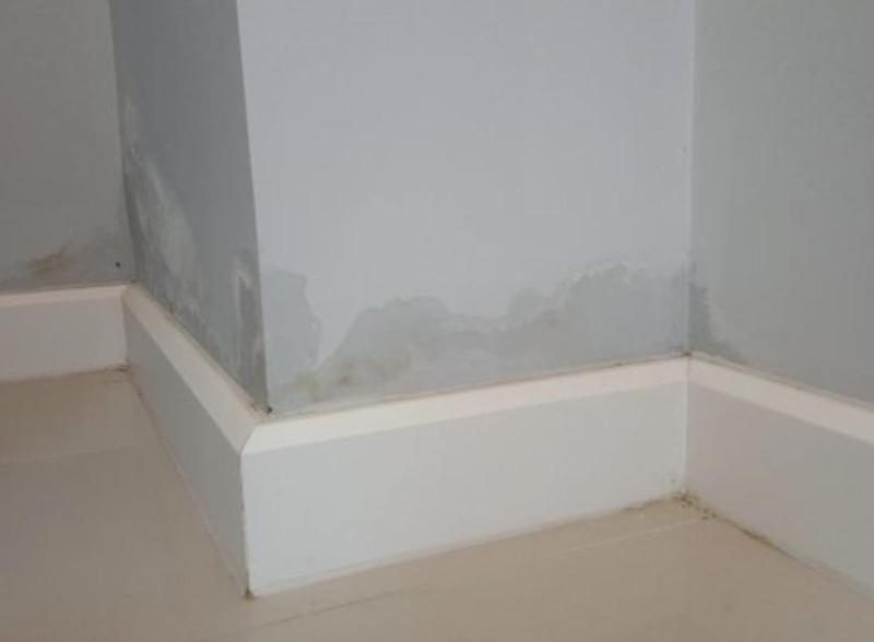 Image 1 - Recent case of rising damp - now resolved following remedial works