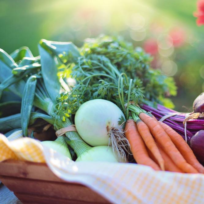 The Top Five: Vegetables To Grow This Summer