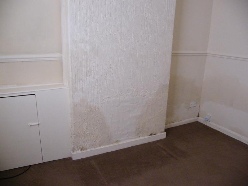 Image 17 - Damp proof system failed installed by unquilified contractor