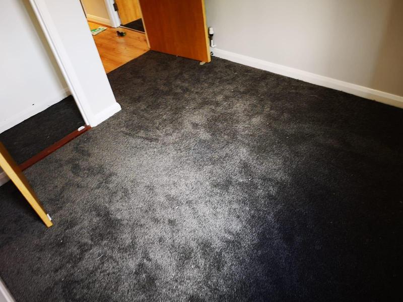 Image 53 - New carpet following flat redec