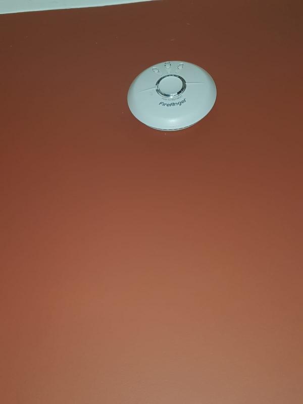 Image 5 - Carbon monoxide alarm test