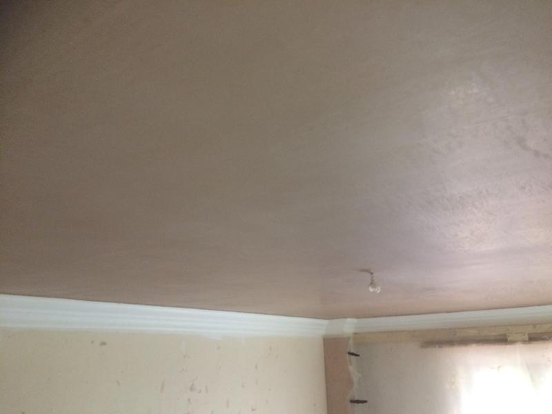 Image 37 - Repaired ceiling plastererd