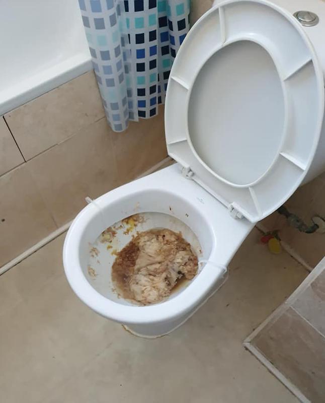 Image 1 - Blocked Toilet - Before