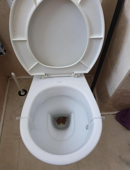 Image 2 - Blocked Toilet - After
