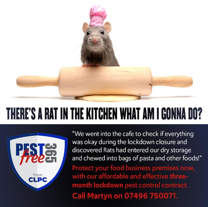 Image 1 - During lockdown, restaurants, bars, cafes, take -aways and other food establishments are at high risk from Rodent infestation. Empty premises = high risk from Rats and Mice!