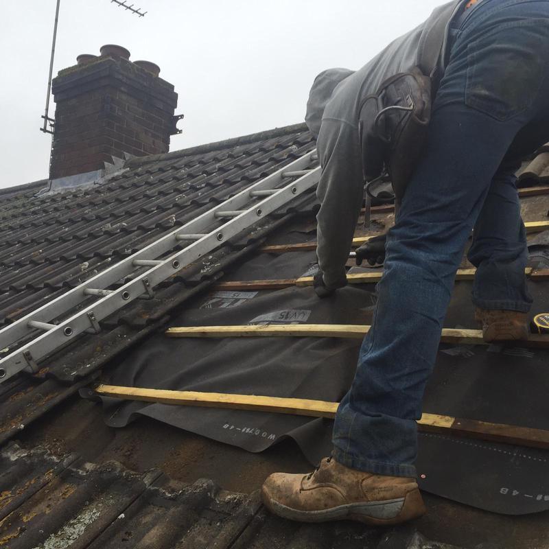 Image 54 - RoMoss removalsof repairs